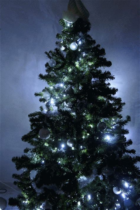 christmas tree gif find share on giphy