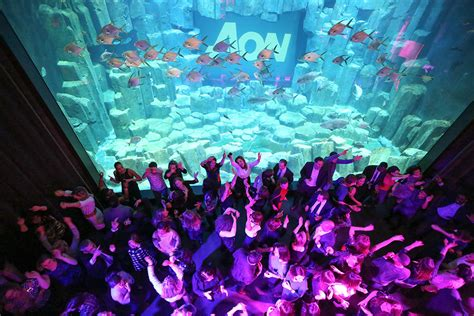l aquarium de club club de l aquarium ex ozu salle pour anniversaire comit 233 entreprise
