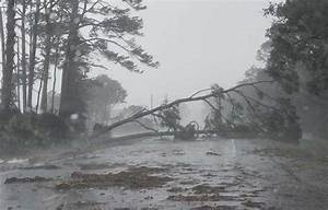 Hurricane Michael makes landfall with 155-mph winds in ...
