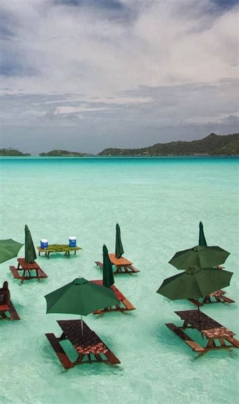 17 Best Ideas About Bora Bora Honeymoon On Pinterest