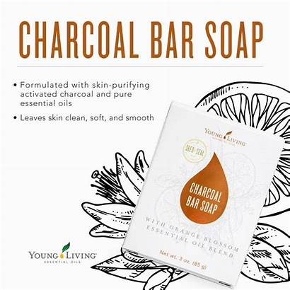 Bar Soap Young Living Charcoal Smooth Soft