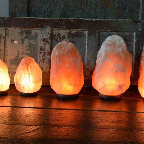 himalayan salt l bulbs himalayan salt l xl 10kg 12kg atlantisireland