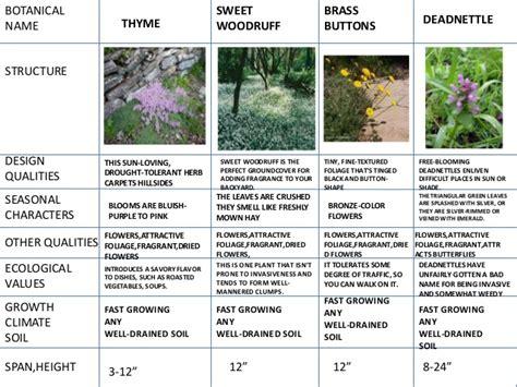 types of landscape landscape types plants tree shrubs