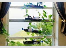 How to Build a Hanging Bottle Garden for FREE YouTube