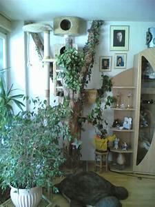 Grünspan Entfernen Holz : katzenbaum ~ Eleganceandgraceweddings.com Haus und Dekorationen
