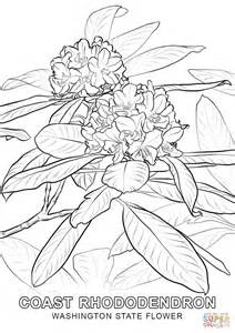 Washington State Flower Coloring Page