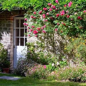 Se Débarrasser Des Guepes Maçonnes : jardinage comment se d barrasser des insectes nuisibles ~ Carolinahurricanesstore.com Idées de Décoration