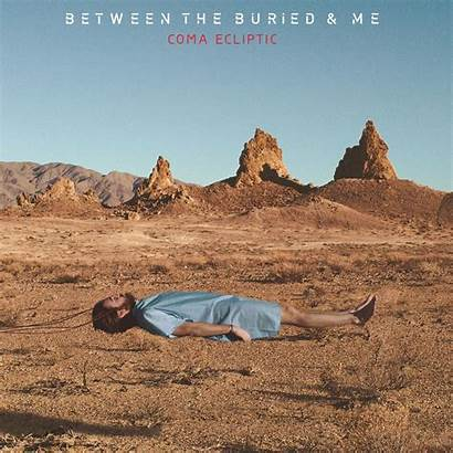 Buried Between Ecliptic Coma