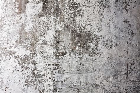Paper Backgrounds White Grunge Wall Background