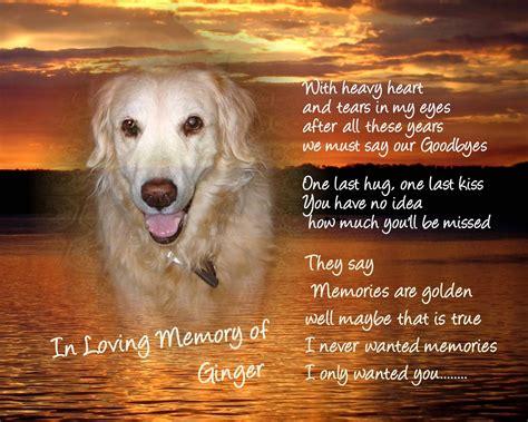 memorial quotes  dead dogs quotesgram
