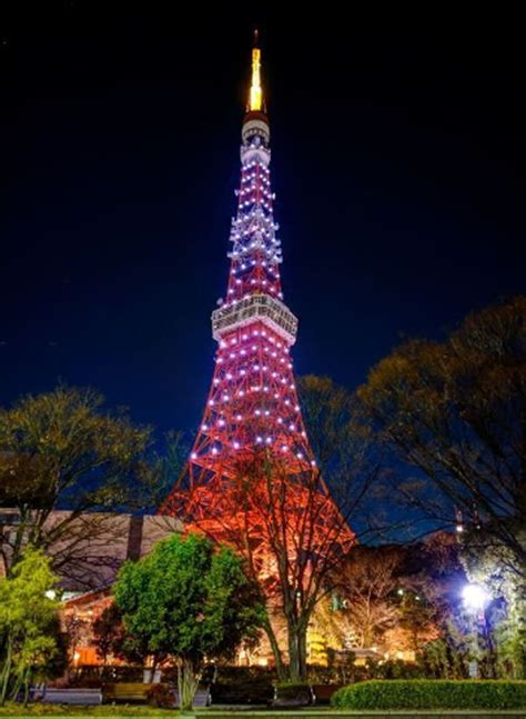 best things in tokyo best 25 aomori ideas on japan cherry blossom
