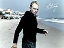 """bollywood secrets: Sting, """"If You Love Somebody, Set Them ..."""