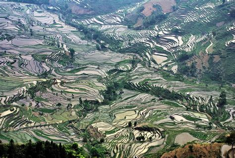 yuanyang rice terraces yuanyang rice terraces all points east