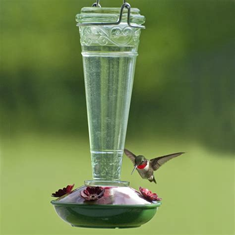 duncraft com 10 oz decorative glass hummingbird feeder