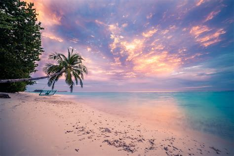Tropical Beach Sunset Wallpaper And Background Image
