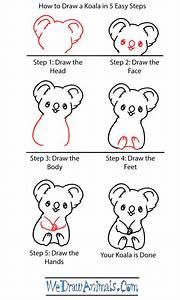 How to Draw a Baby Koala