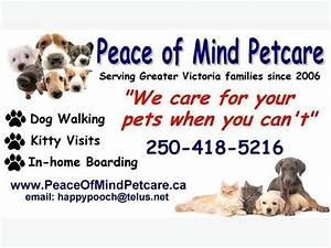 dog walking pet sitting in home boarding saanich victoria With at home dog sitting