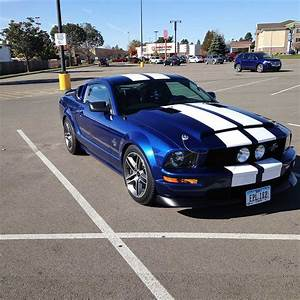 Blue 2006 Ford Mustang GT Super Snake Tribute 5spd [SOLD] - MustangCarPlace