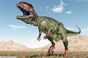 Discover The Different Types Of Dinosaurs With Pictures