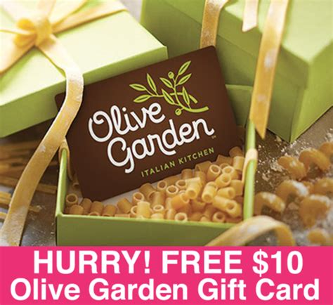olive garden gift card hurry free 10 olive garden gift card limited time