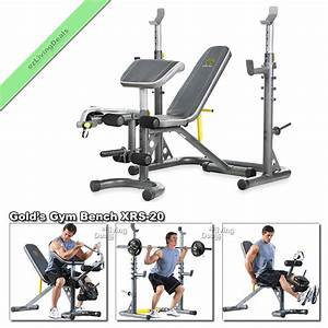 Gold Gym Bench with Rack XRS 20 Olympic Workout Adjustable ...