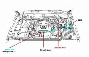 2001 Isuzu Rodeo Wiring Diagram