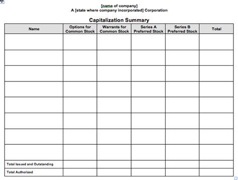 stock ledger  capitalization summary report template