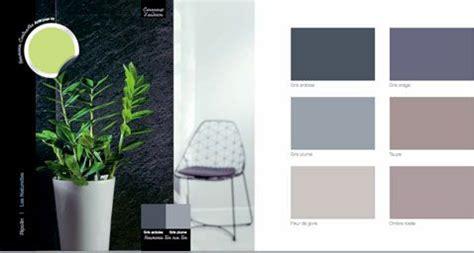 couleur decoration harmonie de gris et taupe couleur en contraste le vert taupe and decoration