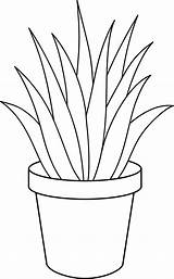 Plant Clip Aloe Vera Line Plants Clipart Potted Sweetclipart Painting Coloring Pages Cactus Cliparts Drawing Flower Simple Clipground Indoor Library sketch template
