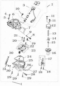 Wiring Diagram  12 49cc Pocket Bike Engine Diagram