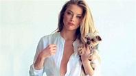US Actress Amber Heard Wiki Bio Age Height Weight Hot ...