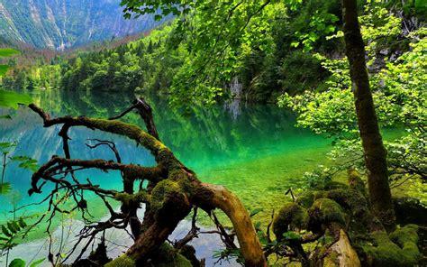 obersee lake constance germany beautiful hd wallpaper