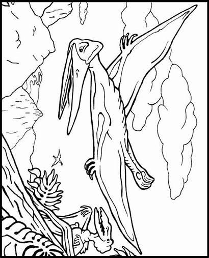 Coloring Pteranodon Dinosauri Crayola Colorear Printable Dinosaur