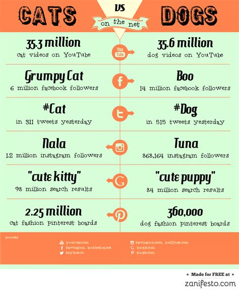 cats dogs vs better than essay pets dog infographic why rules internet visual comparison