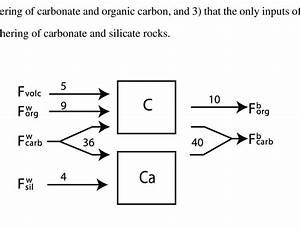 Figure S1  Basic Carbon Cycle Model For The Ocean