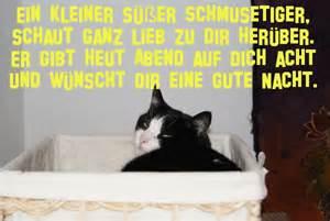 Schlaf Gut Bilder Kostenlos : schlaf gut meine schatzys ti amo x ~ Eleganceandgraceweddings.com Haus und Dekorationen