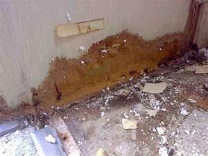 Holz Im Wasser Verbauen : wasserschaden knaus traveller 625 wohnmobil forum ~ Lizthompson.info Haus und Dekorationen