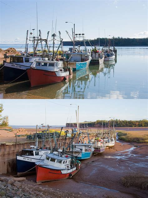 High Tide And Low Tide At Bay Of Fundy  Fishing Boats