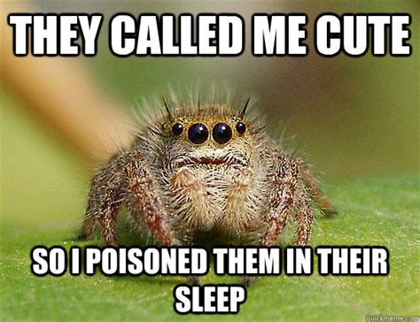 Cute Spider Meme - they called me cute so i poisoned them in their sleep underestimated spider quickmeme