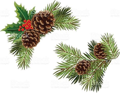 vector collection of christmas tree branches stock vector