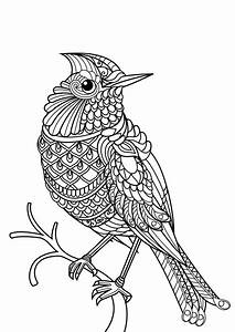 Detailed Animal Coloring Pages For Adults Collection
