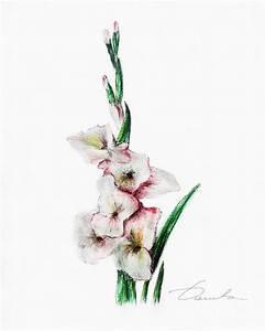 Gladiolus Drawing | www.imgkid.com - The Image Kid Has It!