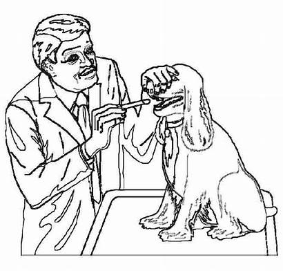 Veterinarian Vet Coloring Pages Printable Colouring Clip