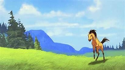 Spirit Stallion Cimarron Horse Cartoon Disney Via