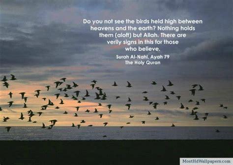 hd islamic quotes  desktop islamic inspirational quotes