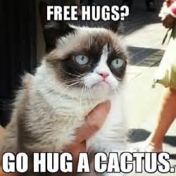 funny grumpy cat meme pictures