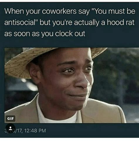 Memes Hood - when your coworkers say you must be antisocial but you re actually a hood rat as soon as you