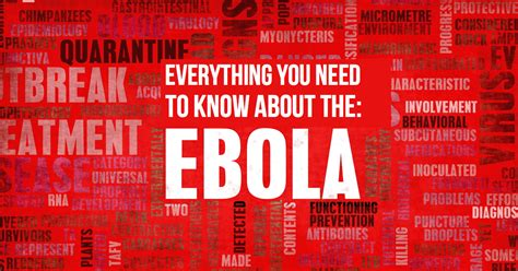 Everything You Need To Know About The Ebola Virus