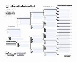 10 pedigree chart templates pdf doc excel free With five generation pedigree chart template