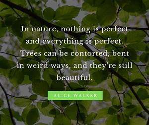 10 beautiful quotes for nature